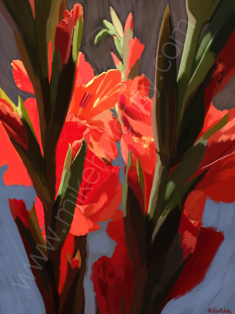 Red Orange Gladioli