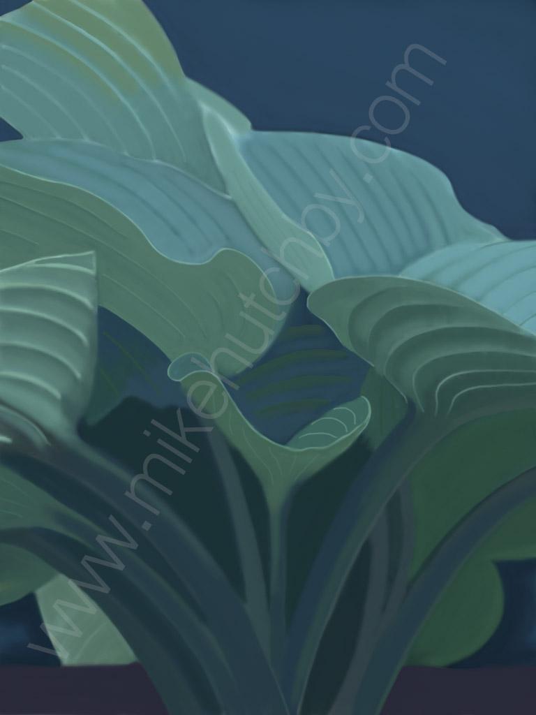 Blue Green Hosta